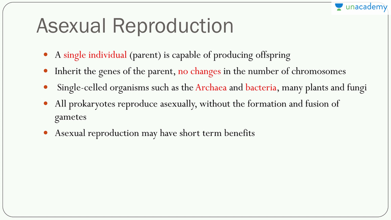 Gemmule formation asexual reproduction advantages