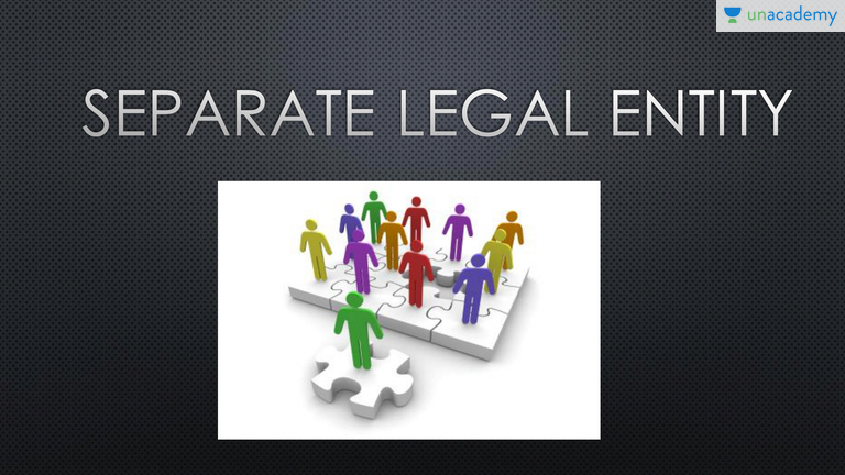 advantages and disadvantages of separate legal entity