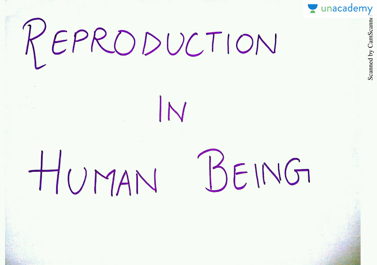 Sexualreproduction in humanbeings