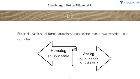 1 pohon filogenetik filogeni dan evolusi hewan unacademy pohon filogenetik filogeni dan evolusi hewan unacademy ccuart Choice Image